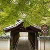 新緑の東福寺周辺をぶらぶらと