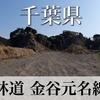 【動画】千葉県 林道 金谷元名線