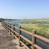 近所の河川敷で散歩してきました