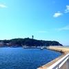【湘南釣り情報】江ノ島釣りポイントや2020年最新の状況まとめ