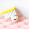 小柳ルミ子の現在は激痩せ!その理由は歯とペットロス?