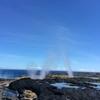 【観光レポート】サバイイ島の観光地を紹介!【南編】