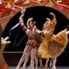 第29回〈バレエの祭典〉会員券、2019年7月20日(金)より募集開始