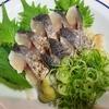 【春が旬】福井県産さごしの鮮度が良すぎたので炙り刺身にして食べる!