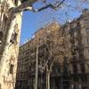 バルセロナのオーガニックショップ