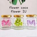 M&M~flower∗coco~~flower∗IU~