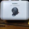 【久々すぎる】競馬・SONYのWF-1000XM4など【近況更新】