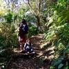 三ヶ岡山緑地へハイキング