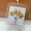 大島の御衣黄桜かな