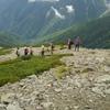 旅タクツアー「山岳ガイド唐橋佳代子と南アルプス千枚岳2880mに登る!2017夏」レポート