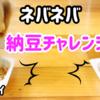 愛犬の納豆チャレンジ ダックス