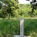 覚海尼円成…女丈夫な北条高時の母が余生を過ごした伊豆・円成寺跡