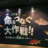 企画展『命をつなぐ大作戦!! 〜生きものたちの繁殖ストーリー〜』