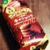 【不二家】カントリーマアム冬のショコラ
