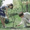 遇見愛情的利先生 DVD 陳シャオ愛、そして完全なポイントをプルアップ怒っ姉妹