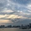 穴場のデートスポットなら豊洲の屋上緑化広場【東京都の公園】