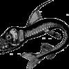 【TOCANA】「深海魚の出現は地震発生と無関係」に異論~リュウグウノツカイなどが大地震前に出現するケースは多い