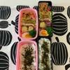 家事がはかどる良い天気☀️〜今日のお弁当〜今日のわんこ〜