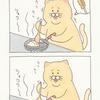 ネコノヒー「飴色タマネギ再び」