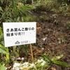 志賀高原エクストリームトレイル2020