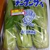 チンゲンサイが50円!with2016/12/5の食費