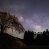 【天体撮影記 第54夜】 群馬県 上発知のしだれ桜と天上に輝く星々