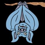 かわいいコウモリ のイラスト