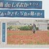 神原町花の会(花美原会)(337)     静岡新聞で見るポピ-花畑の動画
