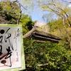 春限定の御朱印と嵐山の桜 京都・祇王寺