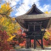 Reishoji - The most breathtaking spot to see fall foliage in Omachi Nagano, Japan