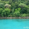 パラワン島・最後の秘境ポートバートン④