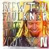 "【446枚目】""Write It On Your Skin""(Newton Faulkner)"