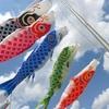 【鯉のぼり】こどもの日に鯉のぼりを揚げるのは何故?〜色の意味や由来から調べてみました〜