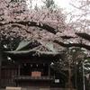4月某日ひとり温泉旅 栃木県・塩原温泉へ('16)