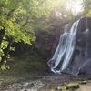 滝野公園へ紅葉ラン