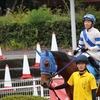 サンドジョーカー3勝目レース写真(観戦馬主様よりご提供!)