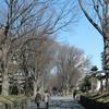 「武蔵一宮 氷川神社」