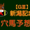 【GⅢ】新潟記念 結果 回顧
