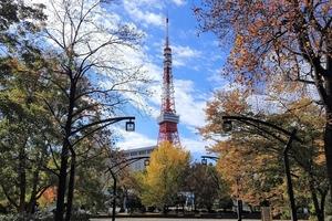 【行ったつもりシリーズ】東京23区の紅葉スポット サイクリングで何カ所回れるか?前半編 穴場スポット発見