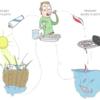 環境問題:マイクロプラスチックの課題と対策