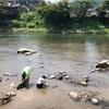 愛知県内で川遊び (ムシャクシャしてやった)