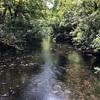 イギリス湖水地方のフットパスを歩く グラスミア湖からライダルマウントへ