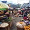 庶民の台所!シェラの市場デモクラシアを潜入レポ【グアテマラ通信】