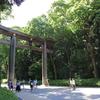 東京往復紀:初夏の神社を訪れに