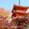 【秋の行楽】京都・清水寺は朝早くに行くのがおすすめ!人も混んでいなくて空気が清々しい!