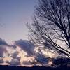空を愛でるように、人を愛したい。