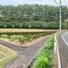 長者ヶ池(新潟県糸魚川)