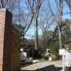 六義園 付近の  風景 ☆ ☆ ☆