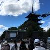 弘法さんの市へお久しぶり #kyoto  #東寺 #弘法市