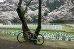 自転車大好きな私が23万円のロードバイクに乗らなくなった理由